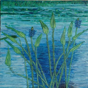 Pickerel weed final